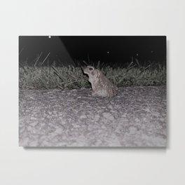 Awe-inspiring Amphibian Metal Print