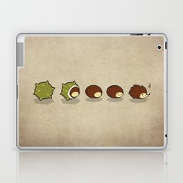 Let There Be Hedgehogs Laptop & iPad Skin