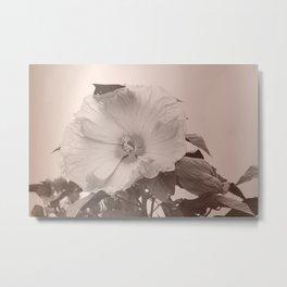 Dusty Bloom Metal Print