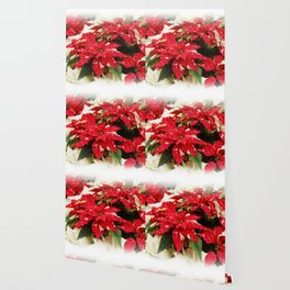Shimmer Surprise Poinsettias Wallpaper