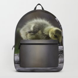 Baby Gosling Backpack