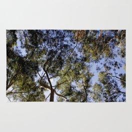 Eucalyptus Tree Canopy Rug