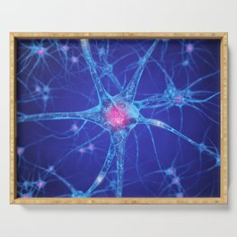 Neurons Serving Tray