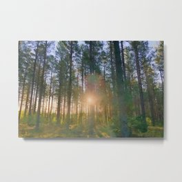 Scottish forest watercolor painting #7 Metal Print