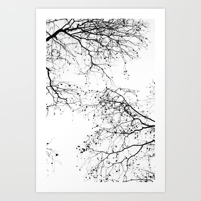 BLACK BRANCHES 2 Art Print