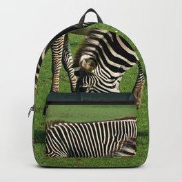 Double Zebra Backpack