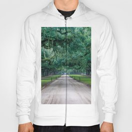 Tangled Trees Hoody