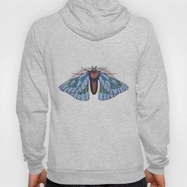 blue moth (original sold) Hoody