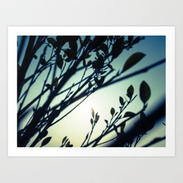Moody Nature Art Print