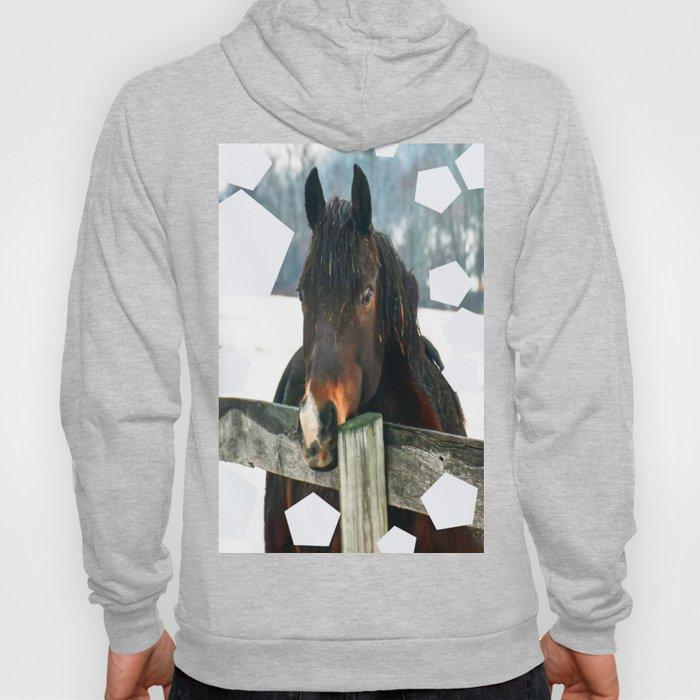 Thoughtful Horse Hoody