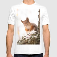Squirrel in first snow 2X-LARGE White Mens Fitted Tee