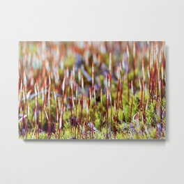Abstract Nature - Moss flowers pattern Metal Print
