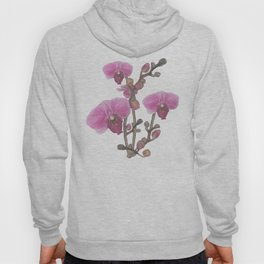 Orchids Hoody