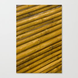 Bamboo Pattern / Texture from a Japanese Garden Canvas Print