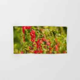 Chaenomeles shrub red flowering Hand & Bath Towel