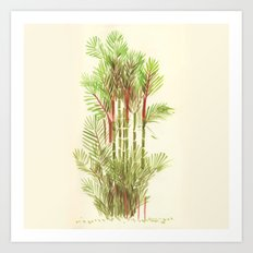 Palmier Rouge - Red Palmtree Art Print