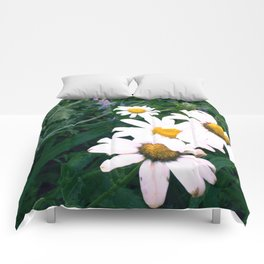 Daisies and Russian Sage Comforters