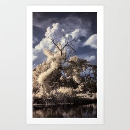 R72: Tree Art Print