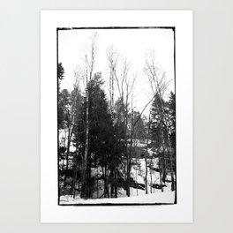 Norwegian forest VII Art Print