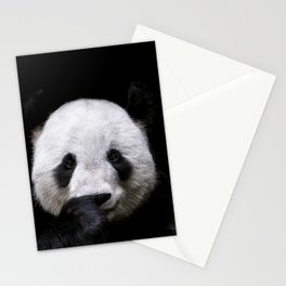 Cute panda bear portrait  Stationery Cards