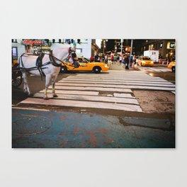 Horse in Manhattan Canvas Print
