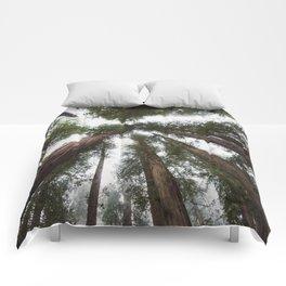 Redwood Portal - nature photography Comforters