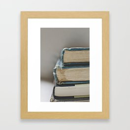 Vintage Books 3 - Book series  Framed Art Print