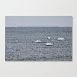 Winter Minimal Canvas Print