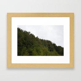 Pine trees atop mountain. Framed Art Print