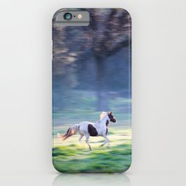 Chasing The Morning Light iPhone Case