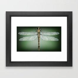 Dragonfly Gratitude Framed Art Print