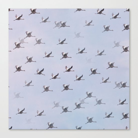 Cranes in Flight II Canvas Print