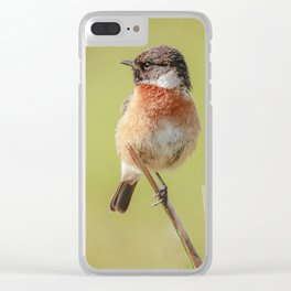 Stonechat Clear iPhone Case