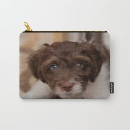 Study in Brown and White - Spaniel Dog Carry-All Pouch