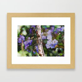 Dragonfly :: Indigo Framed Art Print
