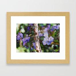 Dragonfly :: Indigo Framed Art Print