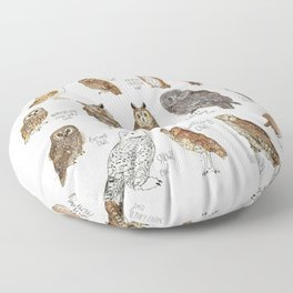 Owls Floor Pillow
