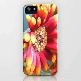 Sunny Gerbers iPhone Case