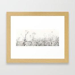 Cow-parsley in Osdorp Framed Art Print