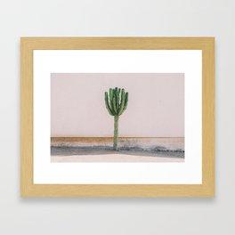 San Diego #1 Framed Art Print