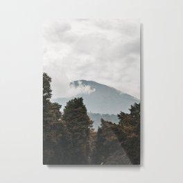 Giant Among the Trees Metal Print