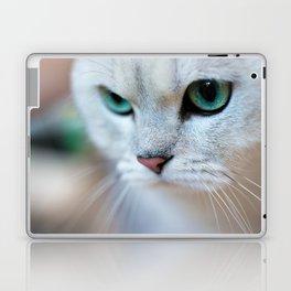 British shorthair silver shaded chinchilla cat Laptop & iPad Skin