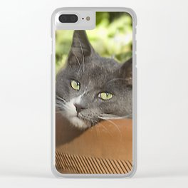 Here's Looking at YOU, Kid! Clear iPhone Case
