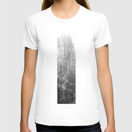 Snow in early fall(3) T-shirt