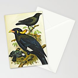 A Journey in Nias Stationery Cards