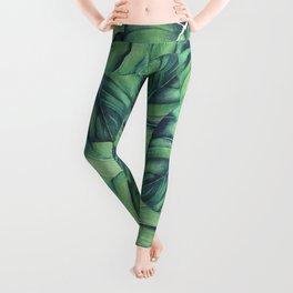 Palm Leaf Print Leggings