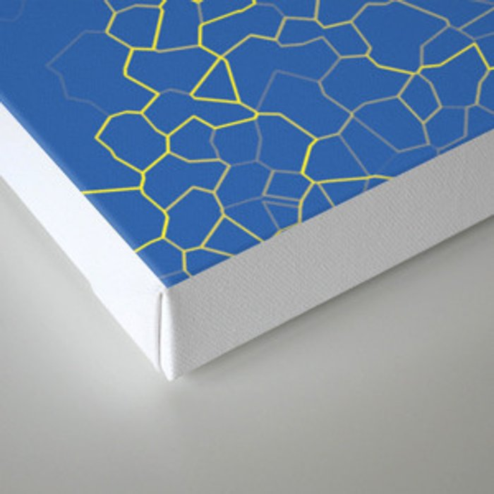 Crackle at the Poolside Canvas Print
