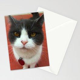 Lighter Missy Stationery Cards