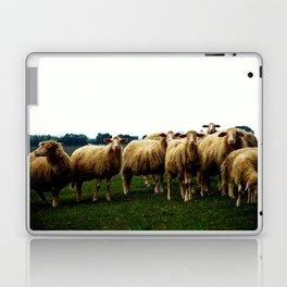 Sheep on a Grassy Hill Laptop & iPad Skin