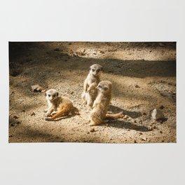3 little meerkats Rug